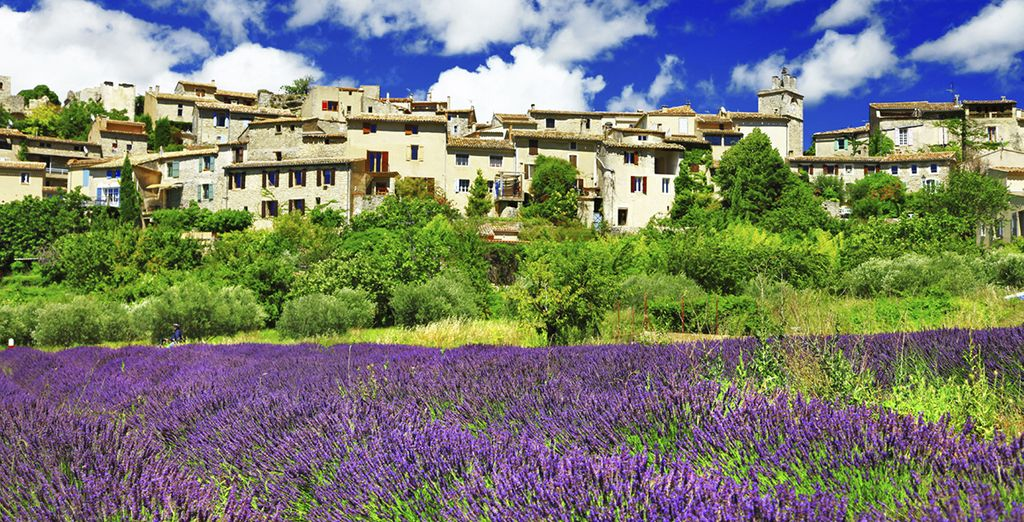 In the stunning region of Provence