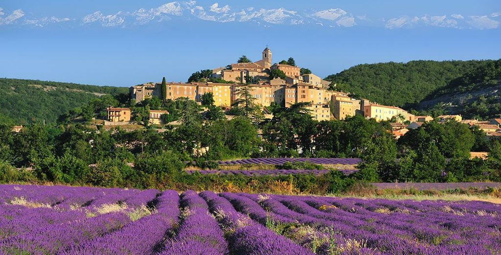 Discover the charming rural town of Noves, nestled in the heart of Provence - Auberge de Noves 5* Noves