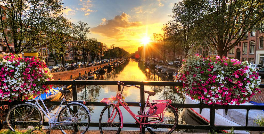 Hop on a bike and explore the inspiring city of Amsterdam