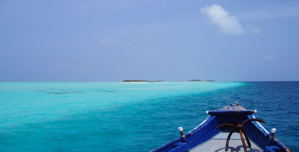 Explore the deep, blue ocean