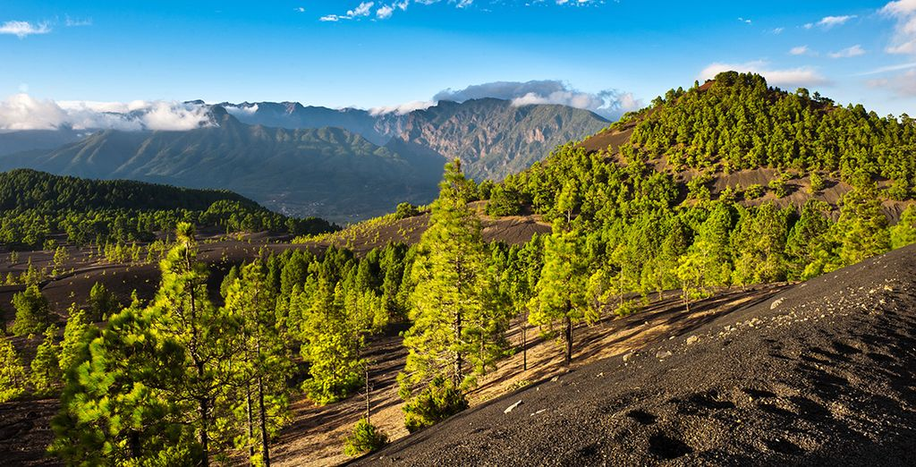 Set on La Palma - the greenest canary island