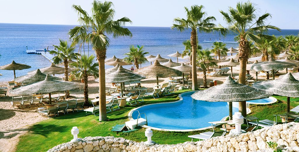Sharm Splendour - The Savoy Sharm El Sheikh 5* Sharm El Sheikh