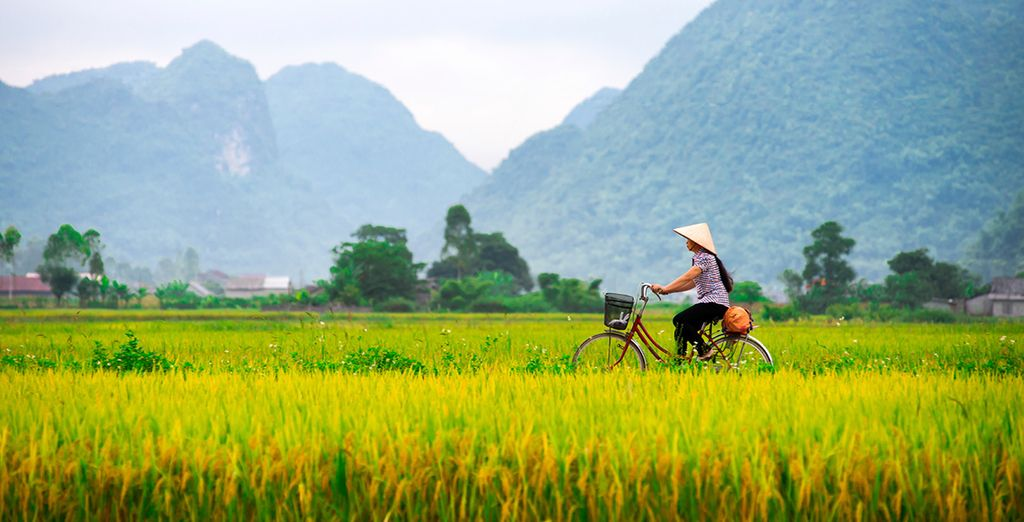 Ride your bicycle to Tra Que vegetable village