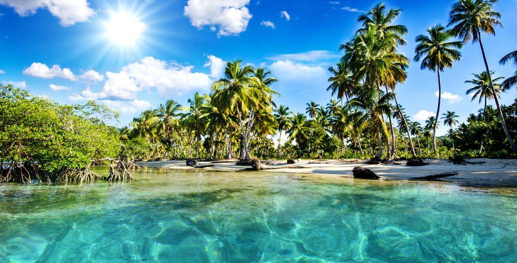 Where dreamy beaches lie in wait...