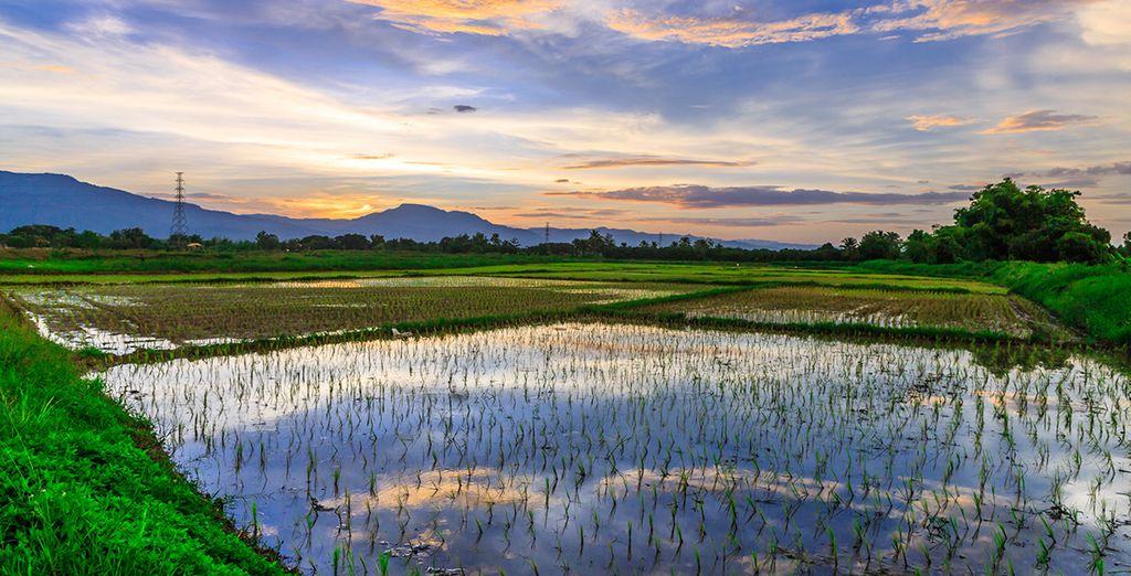 Thailand holidays : Chiang Mai