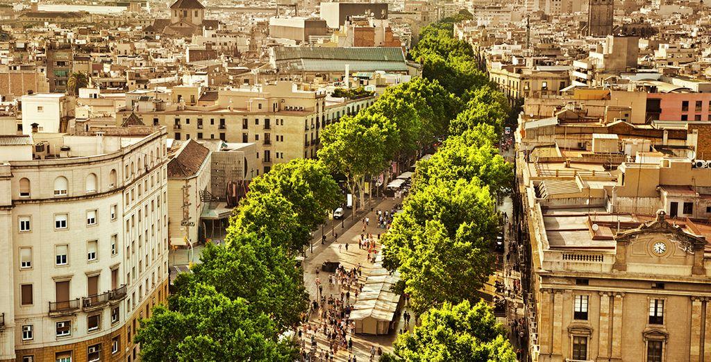 Head into the city for fantastic tapas, art, beaches, shopping...