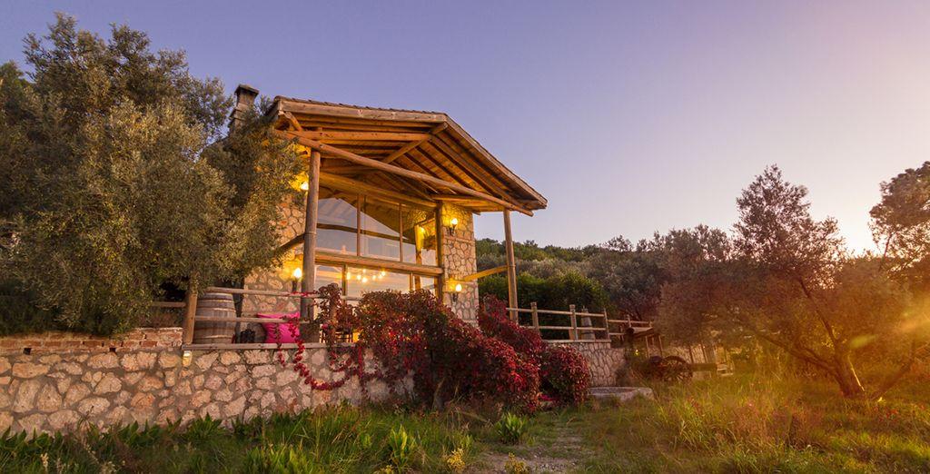 You'll stay in one of 3 villas, such as Casa Brigitte B