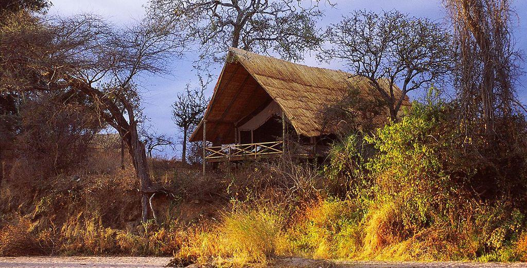 Get cosy at Jongomero, Ruaha National Park