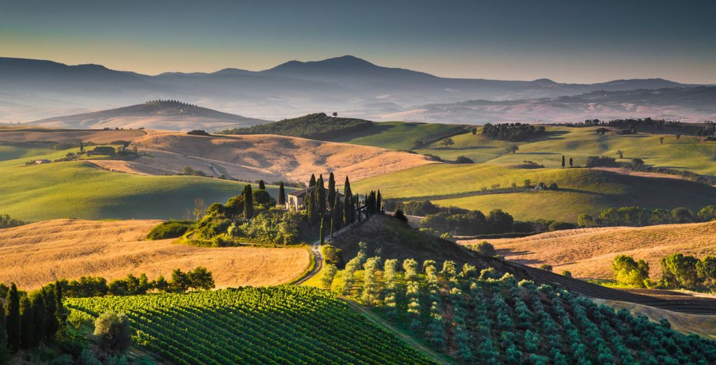 Delve into the rolling hills of Tuscany
