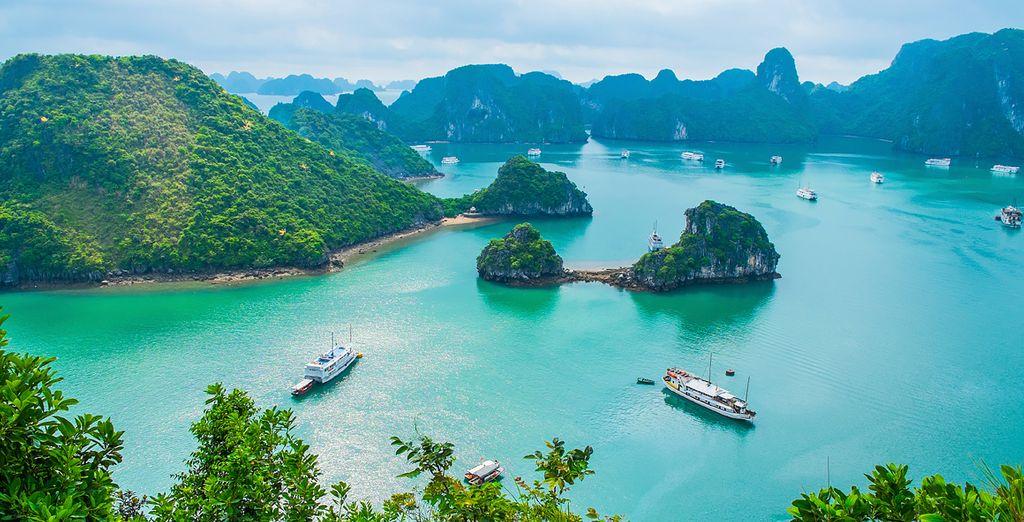 Discover Vietnam...