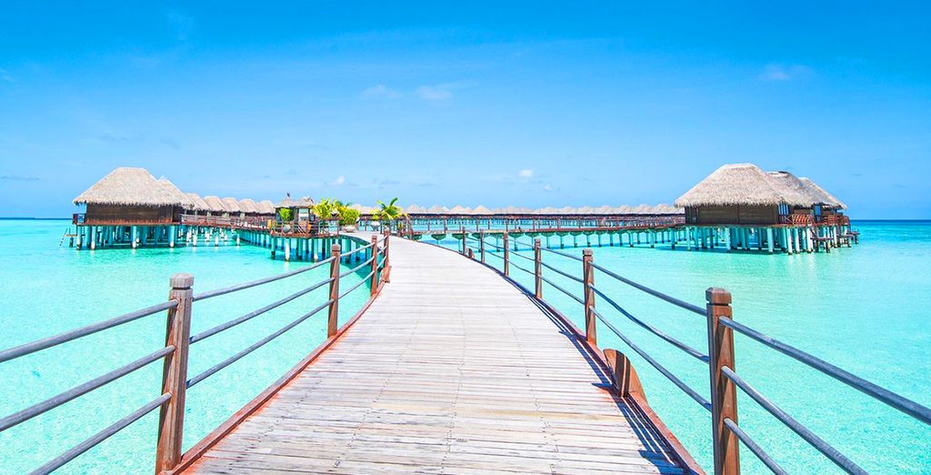 Welcome to the Maldives....