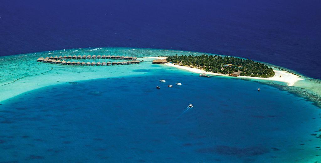 On this paradise island
