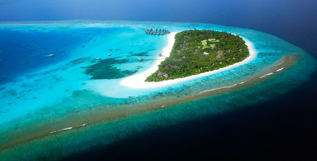 Welcome to Coco Palm Dhuni Kolhu - a gem in the Indian Ocean