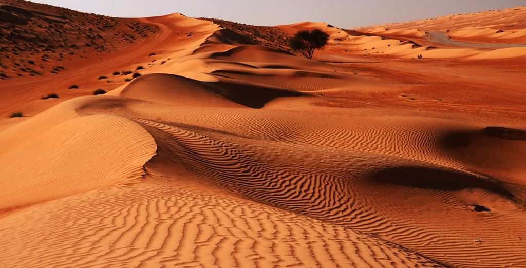 Start your stay in the vast and enchanting beauty of Oman's desert
