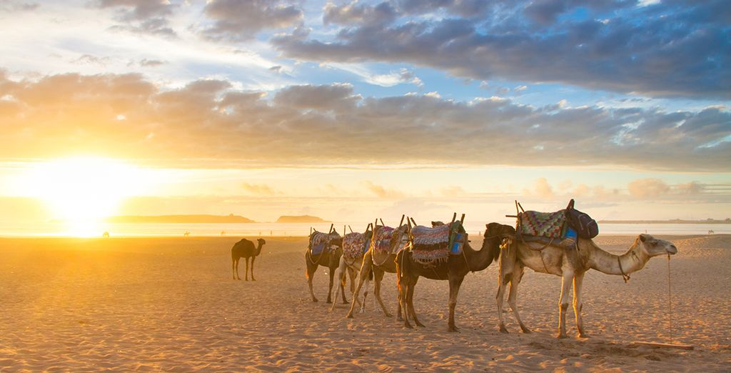 Last minute deals to Morocco
