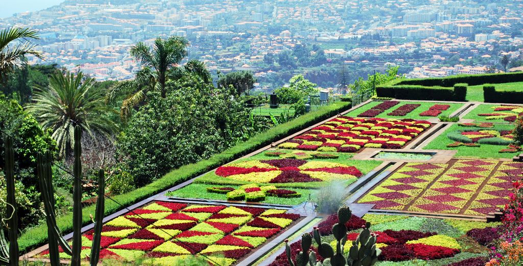Explore Funchal, with its botanical gardens famed for its vibrant colours and impressive panoramic views