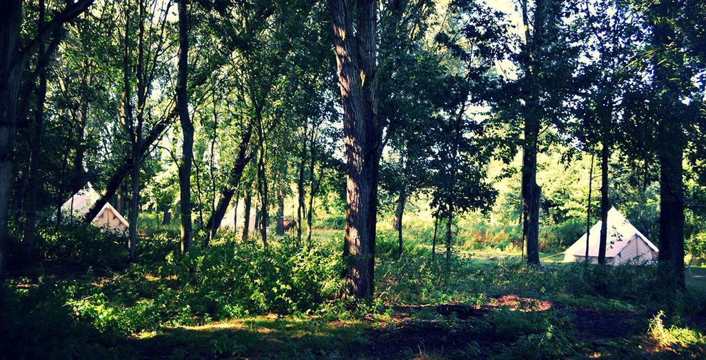 Nestled between an apple orchard and woodland