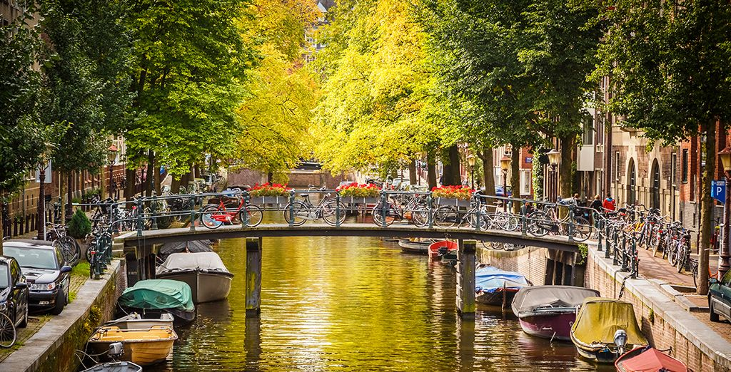 Admire the canals that run through the city