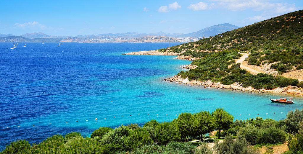 Explore this beautiful coastline...