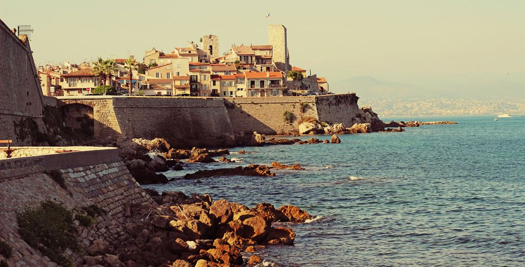 Visit the Antibes on a day trip