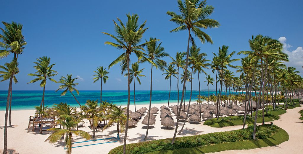 On the palm-studded, sugar white beach in Playa Bavaro