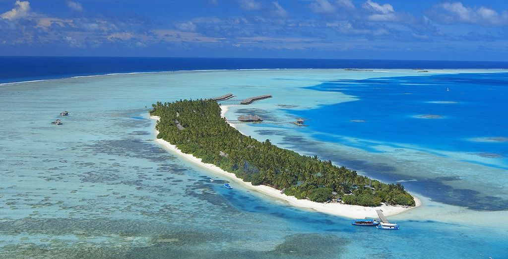 On this tiny island