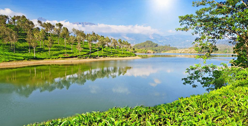 Kerala is such a rich and vibrant part of India!