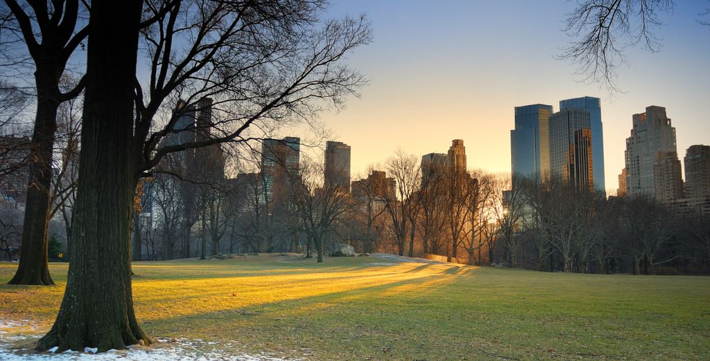 Or wrap up warm for a stroll around Central Park