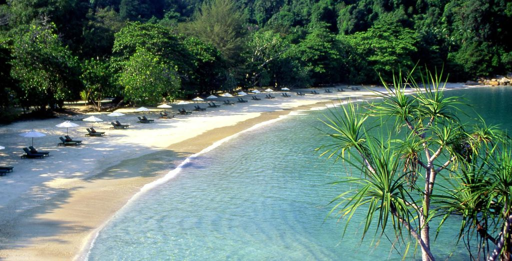 A place where white sandy beaches are fringed with tropical rainforest