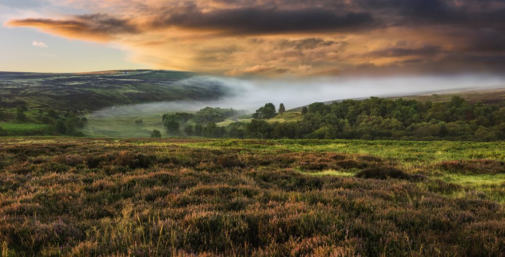 Or admire the beautiful Yorkshire Dales (20 miles)