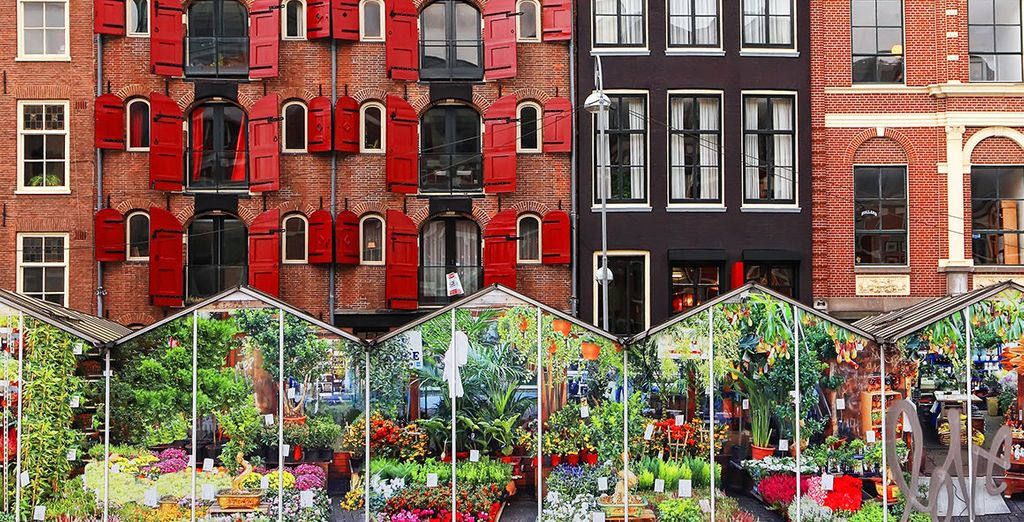 Relish the flower markets of Amsterdam