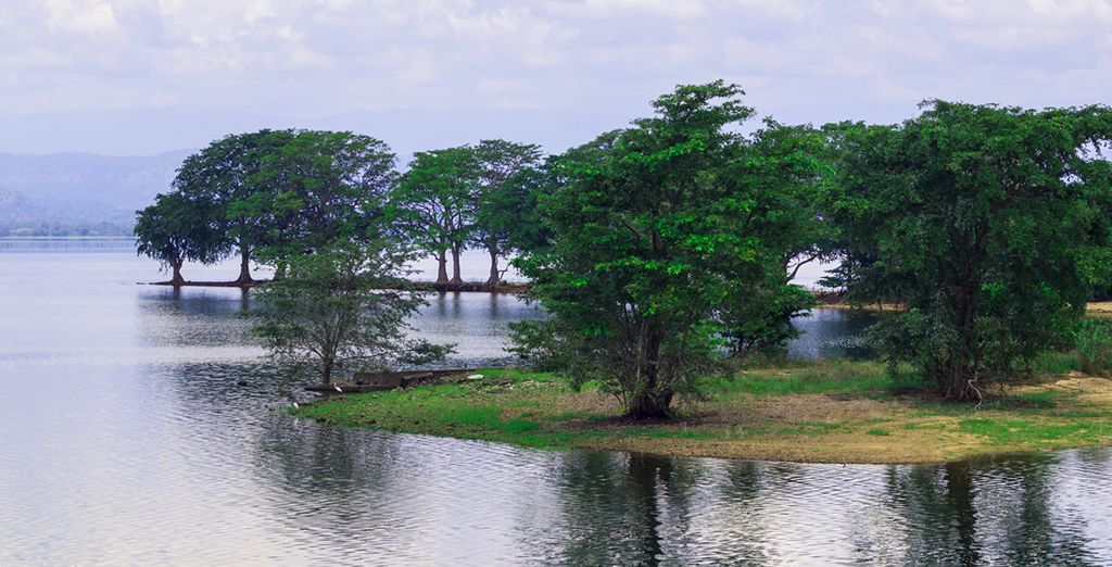 And enchanting landscapes (Udawalawe)