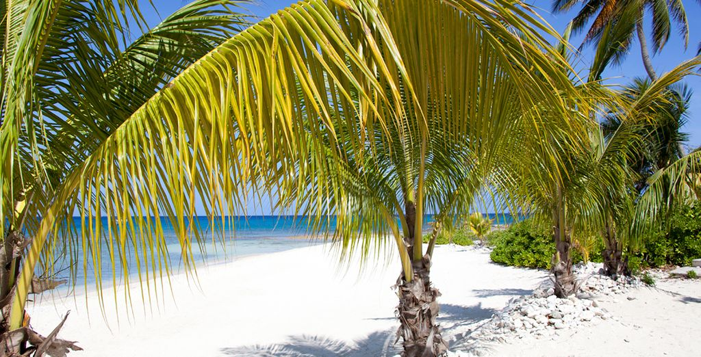 Dig your toes into the powdery beaches of George Town, Grand Cayman