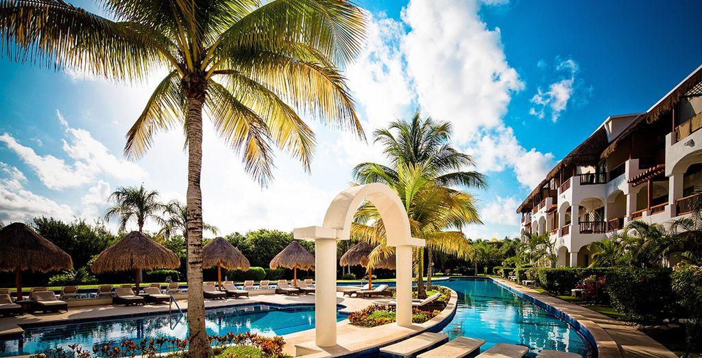 Pure Paradise At Valentin Imperial Maya Awaits   Valentin Imperial Maya  Excursions