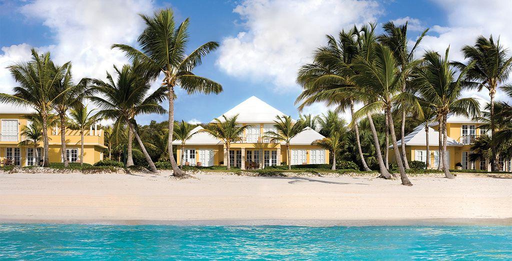 A Caribbean Dream....
