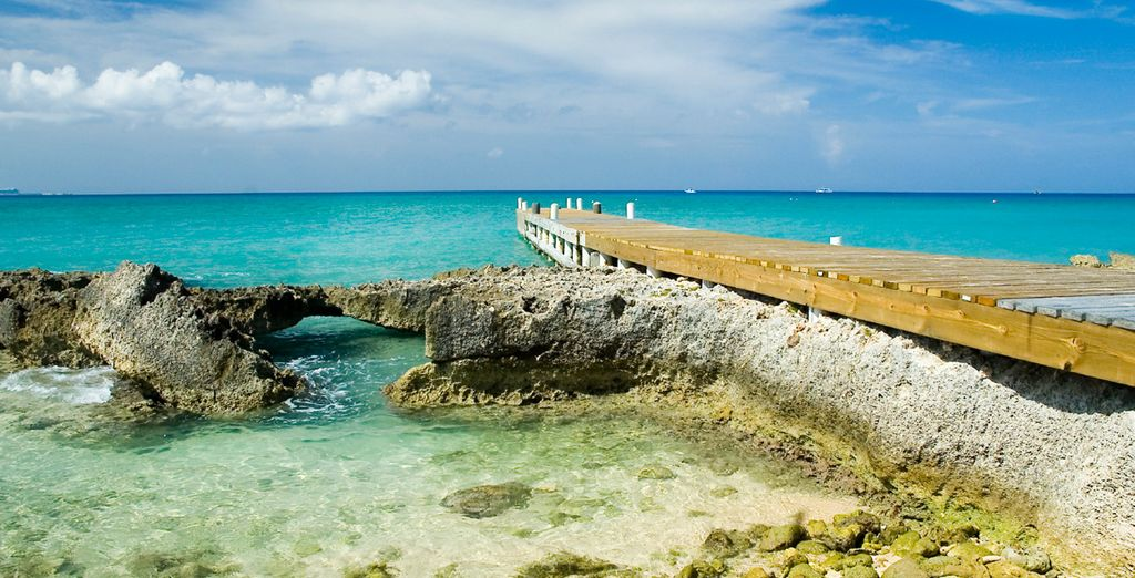 Discover the glory of the Caribbean (Grand Cayman)
