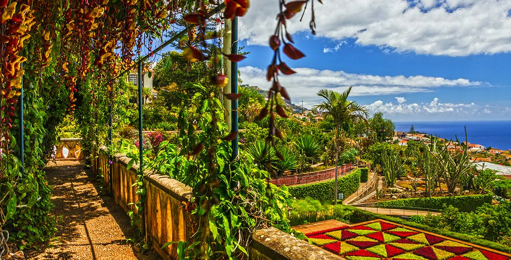 The gardens of Funchal