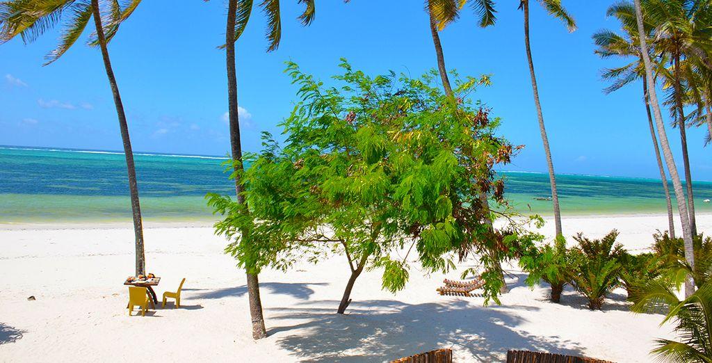 On the stunning jewel island of Zanzibar