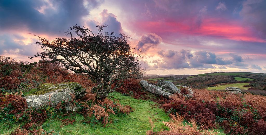 You're bound to fall in love with Cornwall!
