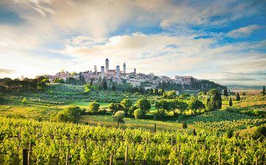 Tour enoturístico en coche por la Toscana
