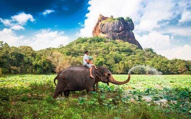 Tour privado por Sri Lanka con extensión a Wadduwa