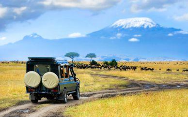 Circuit découverte du Kenya avec Emirates