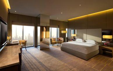 Hôtel Hyatt Regency Dubai Creek Heights 5*