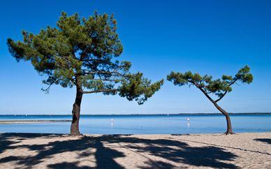 Résidence Les Rives du Lac