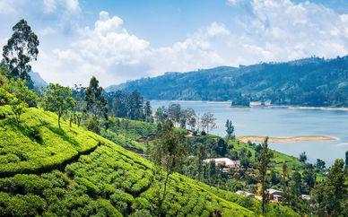 Circuit privé culture et plage au Sri Lanka en 4 et 5*