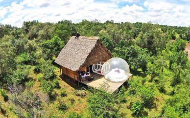 Safari nella riserva di Masai Mara + soggiorno mare a Zanzibar presso Hotel Casa del Mar