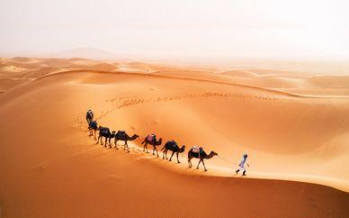 Tour in 4x4 Monte Atlas, gole e deserto del Sahara di 5 o 7 notti