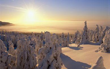 Circuito nella Lapponia Finlandese e visita al villaggio di Babbo Natale