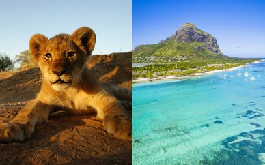 Circuito in Sudafrica & Radisson Blu Azuri Resort & Spa 5*