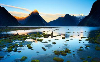 New Zealand Experience